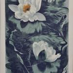 Detailed illustration of two flowering water lilies and lily leaves with reflections on water.