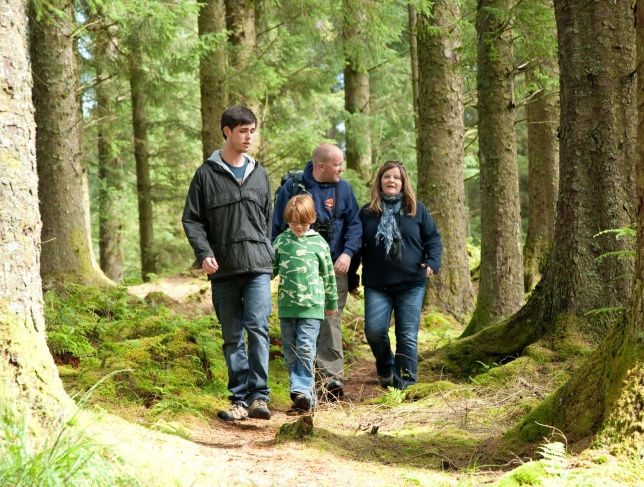 Woodland family walks