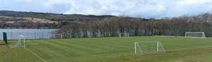 Grass pitch