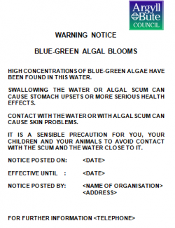 Sample blue green algae notice
